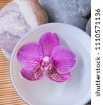 stones with orchid flowers in... | Shutterstock . vector #1110571136