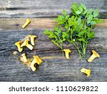 blueberries and chantarella on... | Shutterstock . vector #1110629822