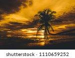 Silhouette Coconut Palm Trees Sun - Fine Art prints