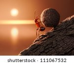 Ant Sisyphus Rolls Stone Uphill ...