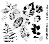 collection of grunge leaves on... | Shutterstock .eps vector #111083162