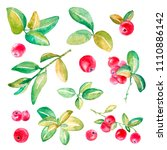 hand drawn watercolor set of...   Shutterstock . vector #1110886142