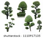 mix bonsai ebony element garden ... | Shutterstock . vector #1110917135