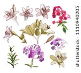 lilies and phloxes. a set of... | Shutterstock .eps vector #1110940205