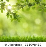 eco nature   green and blue... | Shutterstock . vector #111098492