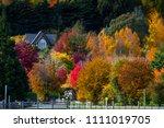 Beautiful Landscape Of Autumn...