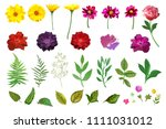 Stock vector floral set collection with isolated colorful hand drawn garden flowers and leaves design for 1111031012