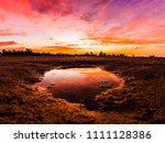 beautiful  bright  saturated ... | Shutterstock . vector #1111128386