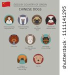 dogs by country of origin.... | Shutterstock .eps vector #1111141295
