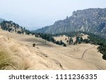evergreen pine tree forest and... | Shutterstock . vector #1111236335