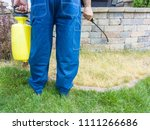 Small photo of Gardener spraying a patch of grass with weed killer using a portable sprayer viewed closeup showing his legs, hands and the equipment
