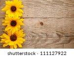 Ornamental Sunflowers On Wooden ...