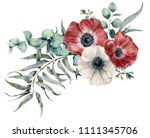 watercolor anemone bouquet.... | Shutterstock . vector #1111345706