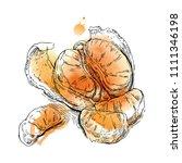 hand drawn vector sketch of... | Shutterstock . vector #1111346198