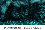 tropical leaf forest glow in... | Shutterstock . vector #1111373228