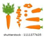 vector illustration. isolated... | Shutterstock .eps vector #1111377635