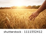 close up of male hand in the... | Shutterstock . vector #1111552412