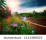 summer meadow on bright sunny... | Shutterstock . vector #1111585022