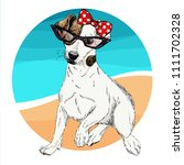 vector portrait of jack russel... | Shutterstock .eps vector #1111702328