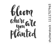 bloom where you are planted  ... | Shutterstock .eps vector #1111707965