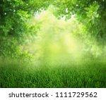 natural green defocused spring...   Shutterstock . vector #1111729562