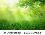 natural green defocused spring... | Shutterstock . vector #1111729565