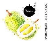 watercolor hand drawn durian... | Shutterstock . vector #1111776122
