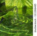 Drop Of Rain Water