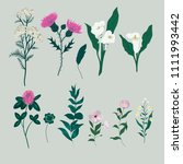 floral and plants set. vector. | Shutterstock .eps vector #1111993442