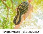 running feet male view from... | Shutterstock . vector #1112029865