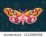 night tropical moths hawkmoth... | Shutterstock .eps vector #1112084558