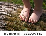 feet of the kid on the tree... | Shutterstock . vector #1112093552