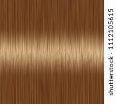 realistic brown straight hair... | Shutterstock .eps vector #1112105615