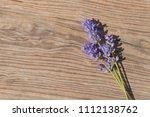 bouquet of fresh flowers... | Shutterstock . vector #1112138762