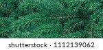 panorama coniferous evergreen ... | Shutterstock . vector #1112139062