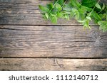 bunch of fresh green mint on... | Shutterstock . vector #1112140712