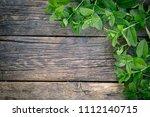 bunch of fresh green mint on... | Shutterstock . vector #1112140715