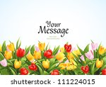 Stock vector flowers vector background with tulips 111224015
