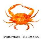 big watercolor drawing of crab... | Shutterstock . vector #1112255222