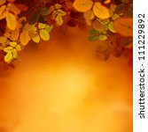 Autumn design. Border leaf background with colorful red and yellow leaves falling from the tree. Fall season concept with copyspace. - stock photo