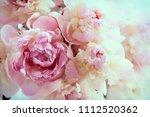 fluffy pink peonies flowers...   Shutterstock . vector #1112520362