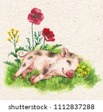 hand drawn cute miniature pig... | Shutterstock . vector #1112837288