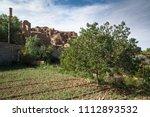 pistachio tree in iran | Shutterstock . vector #1112893532