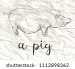 hand drawn vector illustration... | Shutterstock .eps vector #1112898362