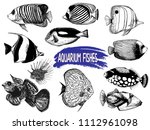 set of hand drawn sketch style... | Shutterstock .eps vector #1112961098