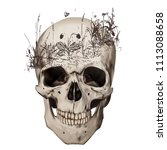 human realistic skull with... | Shutterstock .eps vector #1113088658