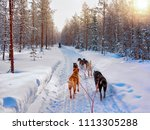 husky dogs on sled in rovaniemi ...   Shutterstock . vector #1113305288