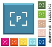 camera program mode white icons ... | Shutterstock .eps vector #1113318902