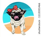 vector portrait of pug dog... | Shutterstock .eps vector #1113331466
