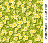 yellow white flowers seamless... | Shutterstock . vector #1113351905